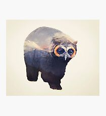 Owlbear in Mountains Photographic Print