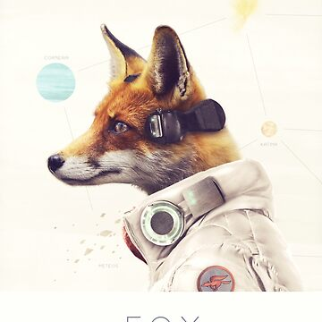Star Team - Fox by andywynn