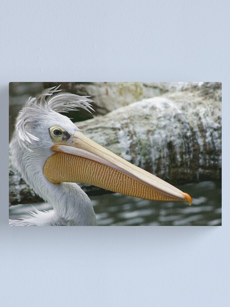 Alternate view of Bad hair day Canvas Print