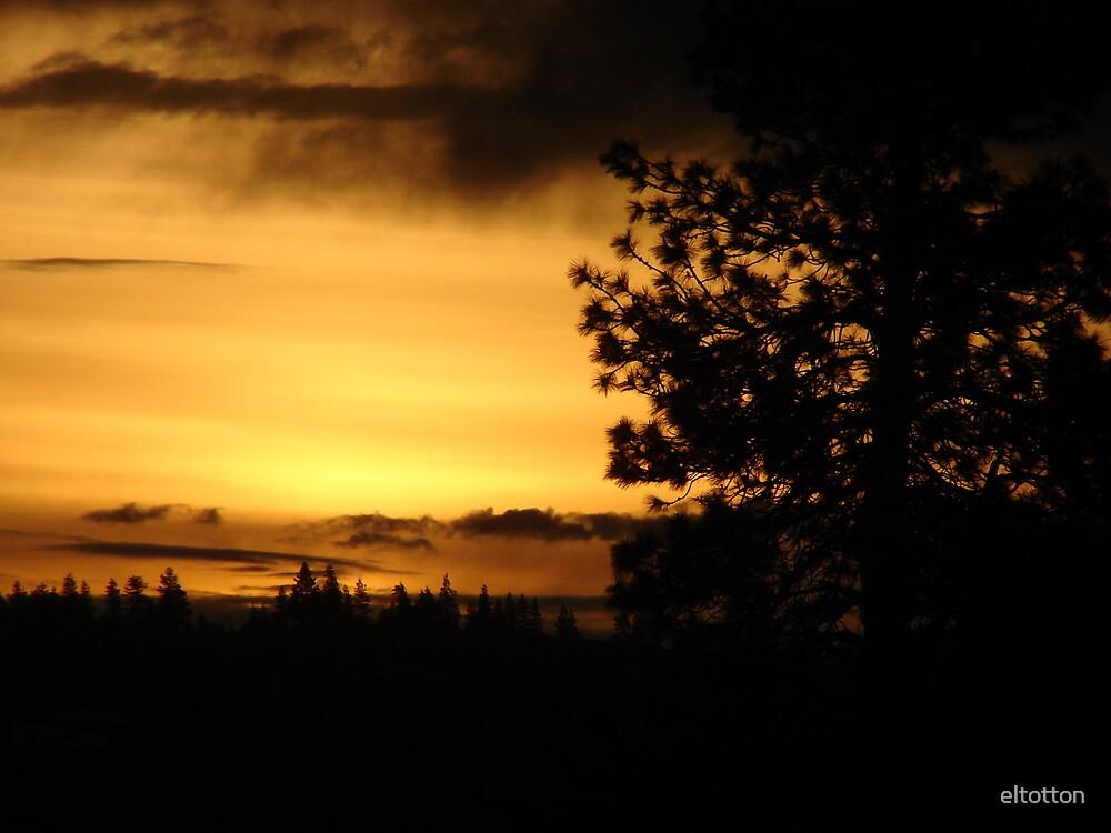 Sunrise in Eastern Washington by eltotton