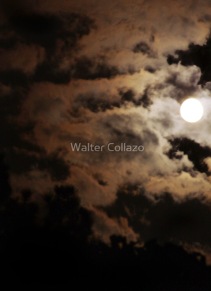 Cloudy Moon by Walter Collazo