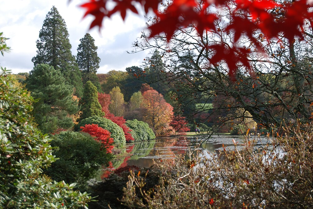 The Great Lake at Sheffield Park UK by Barry Goble