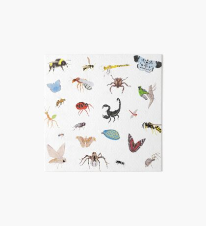 Bugs Art Board Print