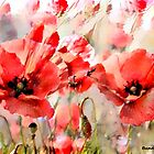 Dancing Poppies by Bunny Clarke