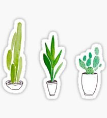 plants  Sticker