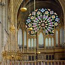 Pipe Organ Votivkirche, Vienna Austria by Mythos57