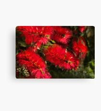 Bottle Brush Abstract 2 Canvas Print