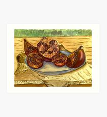 pomegranate ripe. Art Print