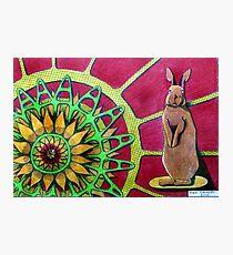 414 - FLOWER-LOVING BUNNY II - DAVE EDWARDS COLOURED PENCILS - 2015 Photographic Print