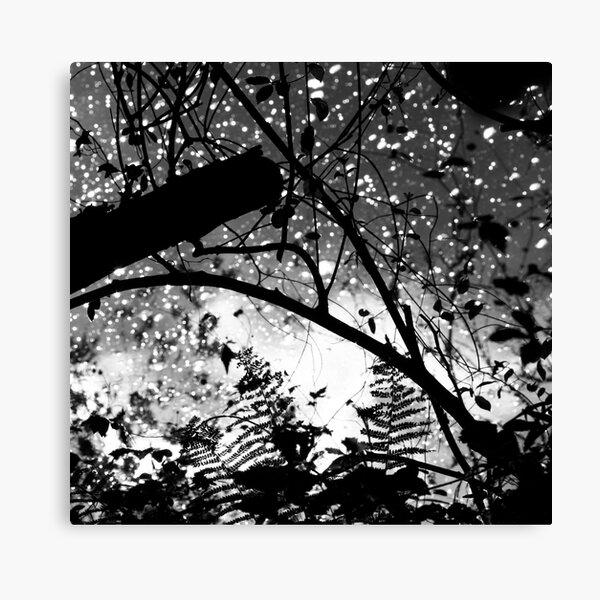 wye pattern Canvas Print