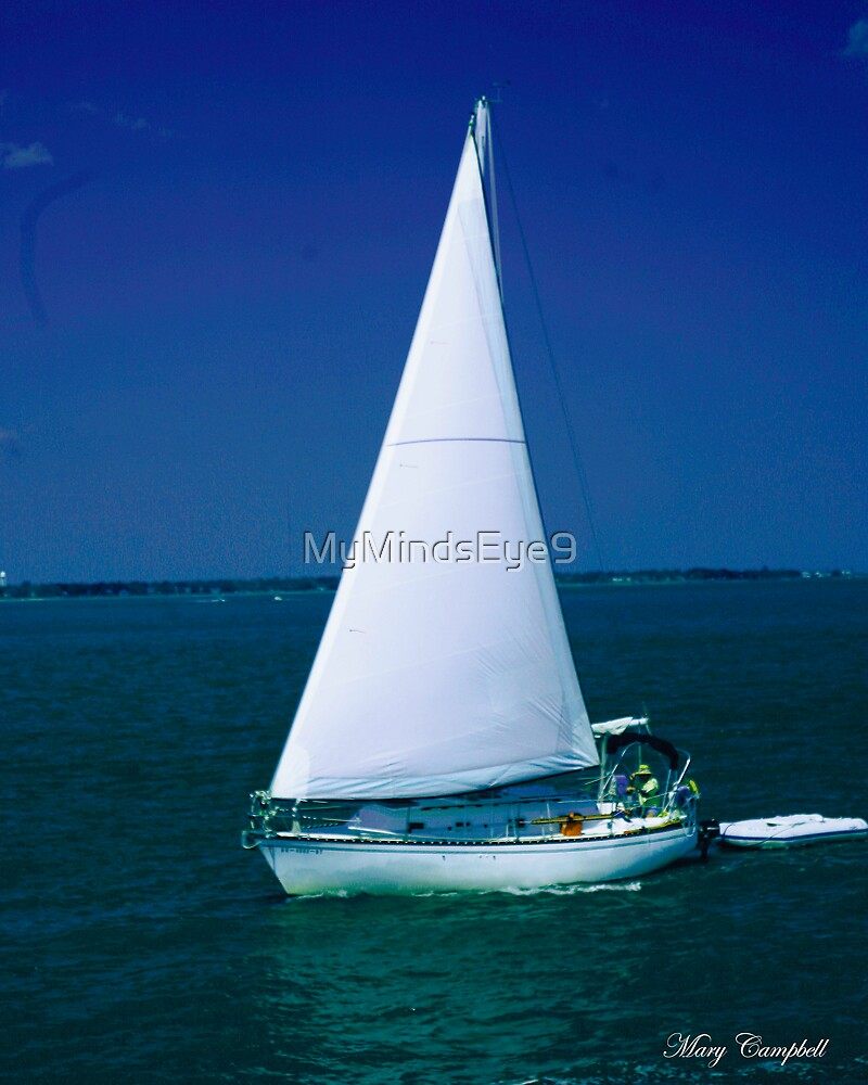 Perfect Sail by Mary Campbell