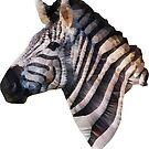 Low Poly Zebra by fuzzydragons