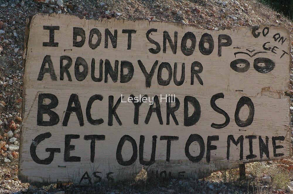 Snoop!! by Lesley  Hill