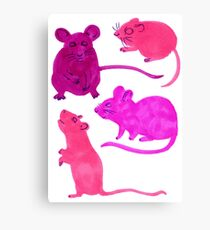 Rodents  Canvas Print