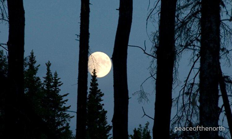 Moonblues by peaceofthenorth