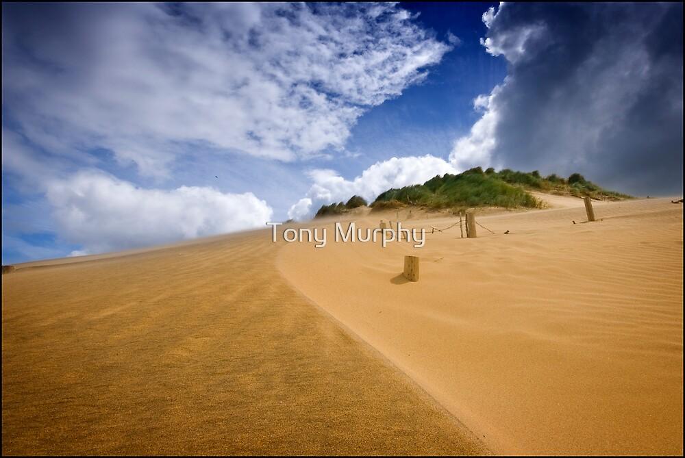 Dune and Sky by Tony Murphy