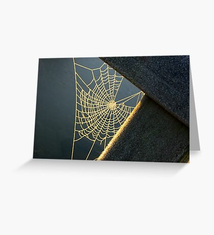Sunkissed Web Greeting Card