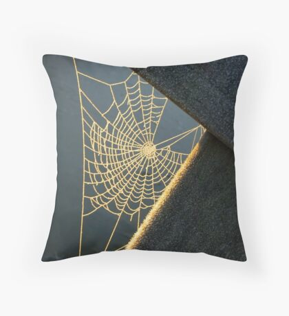Sunkissed Web Throw Pillow