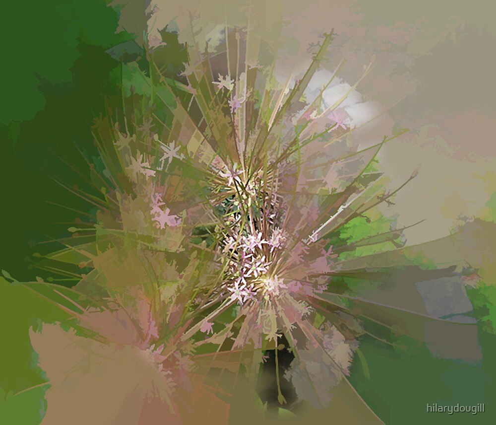 abstract of spikey pink allium by hilarydougill