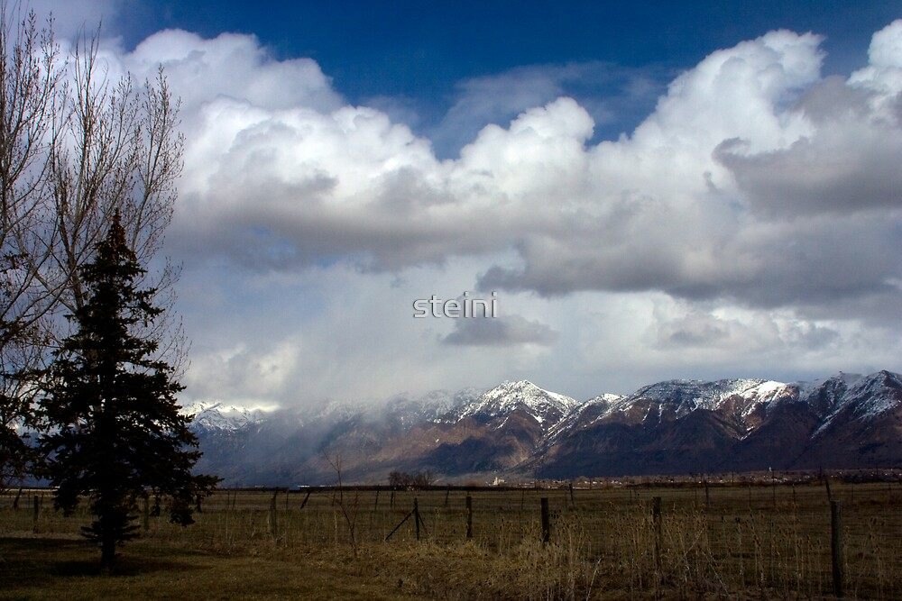 Approaching Storm by steini