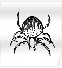 Spiders - Spider Drawing #2 Poster