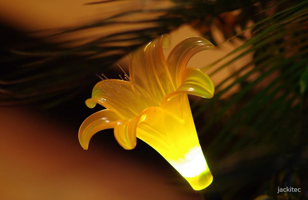 Solar Flower by jackitec