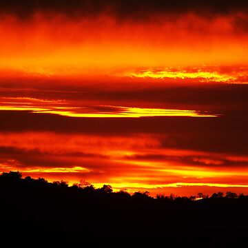 African Sunset of California by Rattlingmurdock