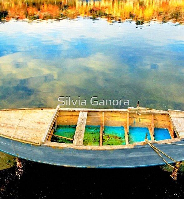 Boat on lake by Silvia Ganora