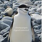 Samsung Galaxy Phone Case featuring Chinstrap penguin (Pygoscelis antarcticus) by DaleJacobsen