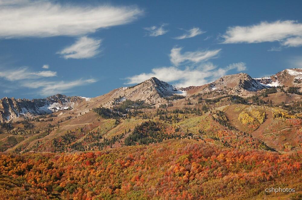 Snow Basin, Utah by cshphotos