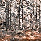 Forest by Dominika Aniola