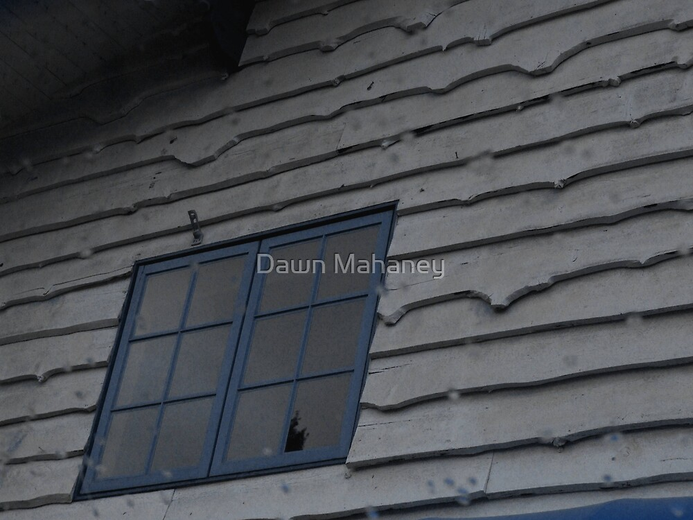 Below the 2nd Story Window.. by Dawn Mahaney