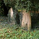 Chester Cemetery by AnnDixon