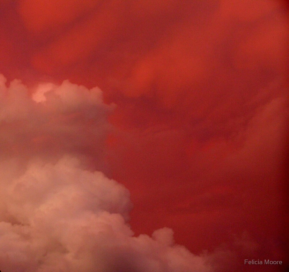 Red Sky at Night by Felicia Moore