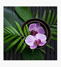 Zen Style Pink Orchid And Palm Leaf Photographic Print