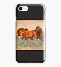 Dreamweaver  iPhone Case/Skin