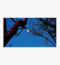 TWILIGHT ZONE Photographic Print