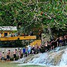 Holding Hands -Dunns River Falls.Jamaica 2010 by lynn carter