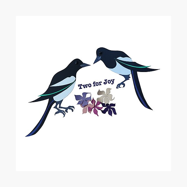 Two magpies Photographic Print