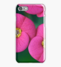 Euphorbia milii (crown of thorns, Christ plant, Christ thorn) iPhone Case/Skin