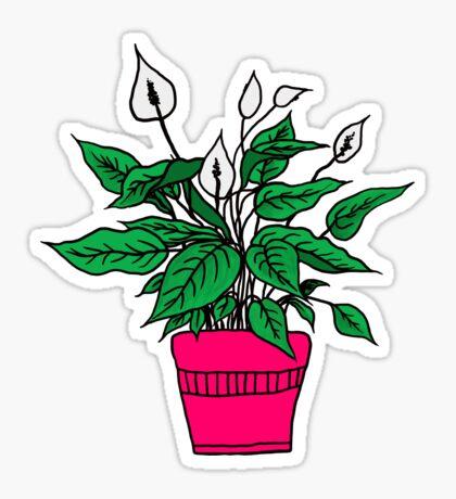 Pink Peace Lily Sticker