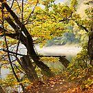 Autumn 9 by Dominika Aniola
