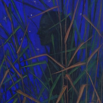 The Night, woman silhouette in the grass, ultramarine starry sky by clipsocallipso