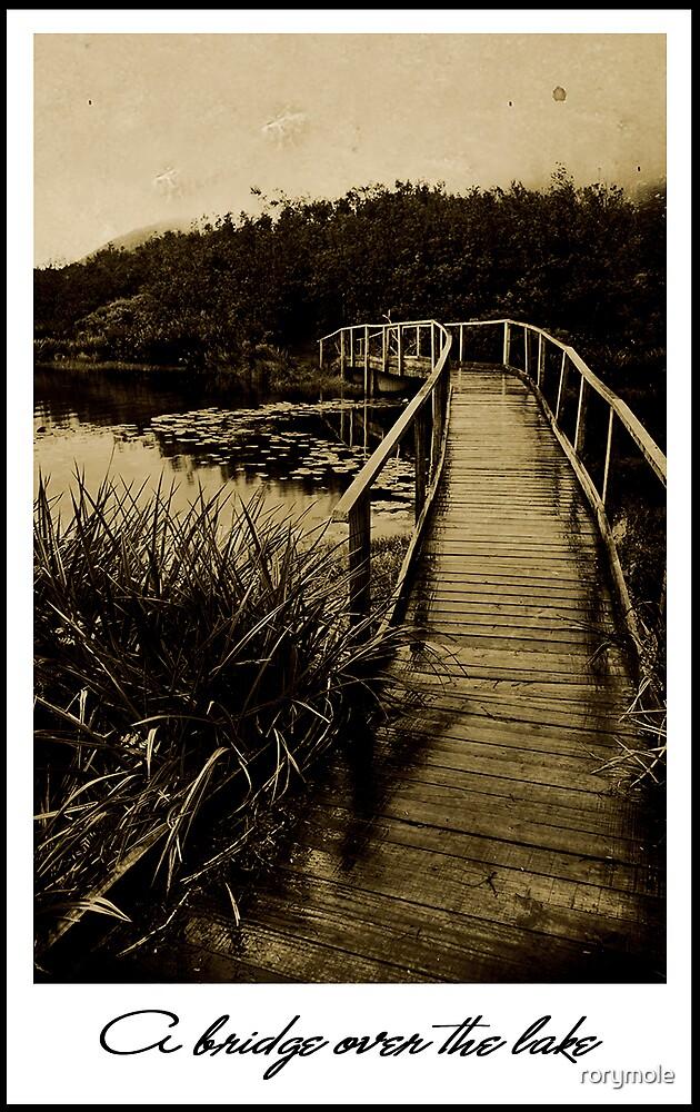 A bridge over the lake by rorymole