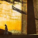 Shadows all around you by Silvia Ganora