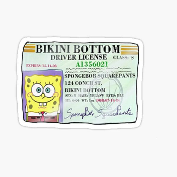 Spongebob Squarepants Driver's License Sticker