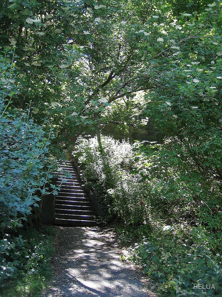 The Hidden Steps by HELUA
