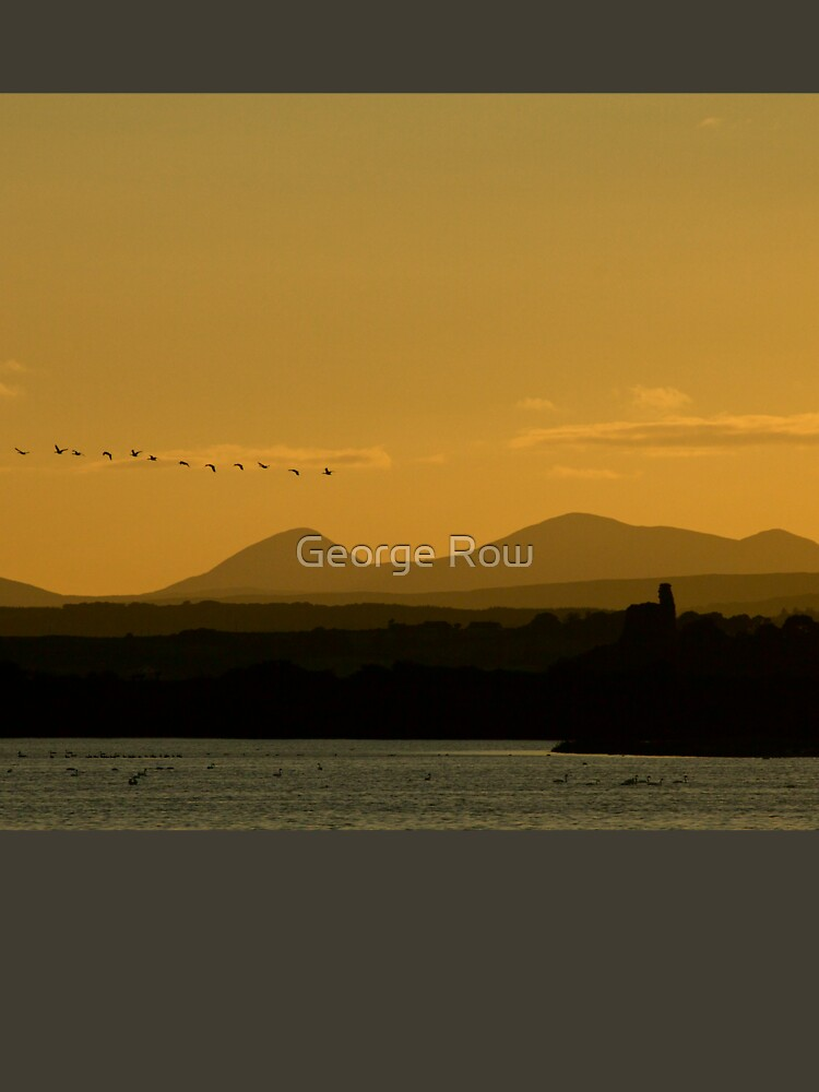 Geese over Derryveagh mountains at Twilight by VeryIreland