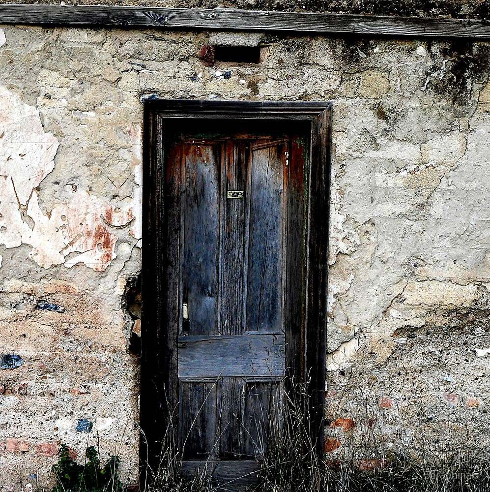 Bush Door by Seraphina6