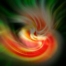 Cosmis Explosion by Jennifer Vickers